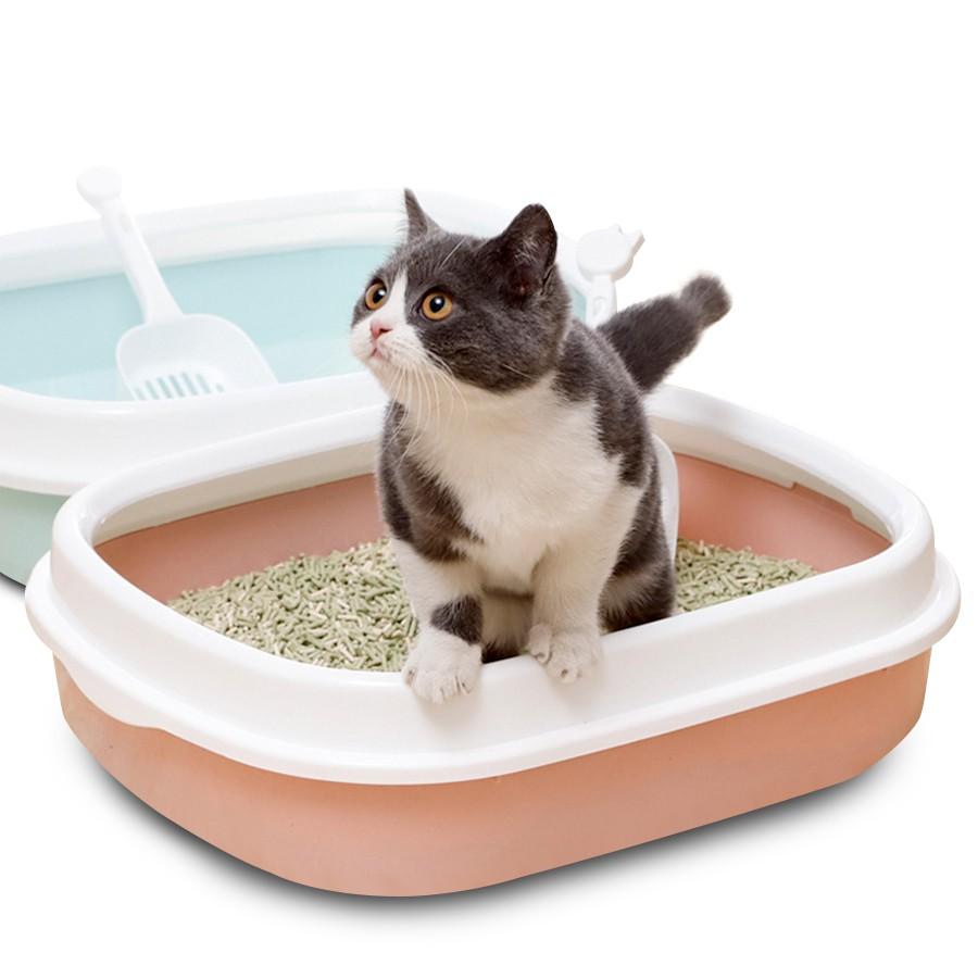 การเลือกกระบะทรายแมว ขั้นตอนแรก ควรเลือกตามประเภทที่เหมาะกับแมวของคุณ