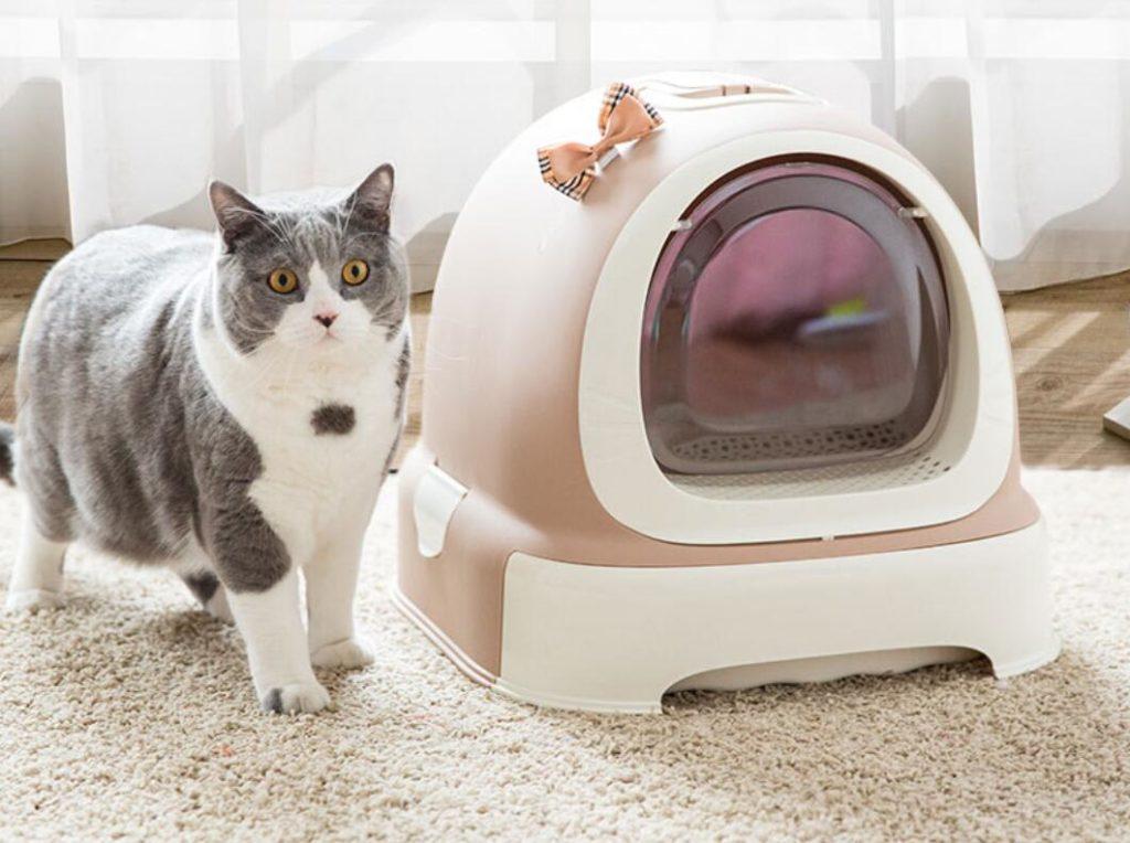 การเลือกกระบะทรายแมว ขั้นตอนที่สี่ ควรเลือกสไตล์ที่เหมาะกับห้องของคุณ