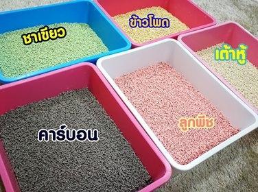 """ทรายแมวเต้าหู้"""" มี 2 แบรนด์ที่ผลิตขึ้นโดยคนไทย ได้แก่ Malee & Friends และ Fluffy Friends"""