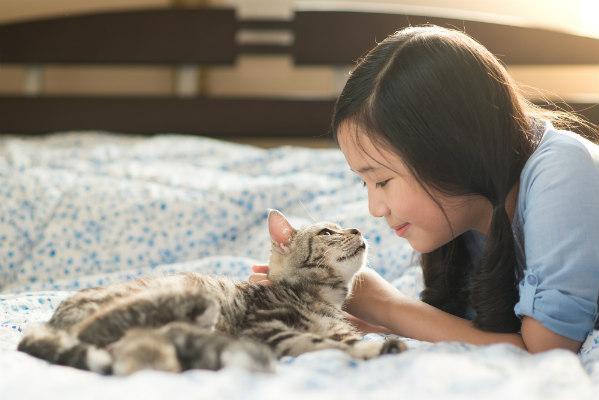 พฤติกรรมของแมว ที่ส่งเสียงร้องเมี๊ยวสั้น ๆ