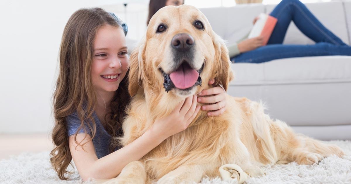 การเลี้ยงลูกสุนัข 3 ช่วงวัย