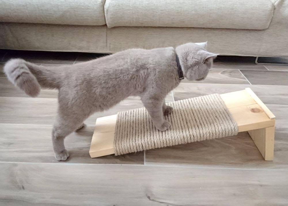 ของเล่นแมว ที่ทาสแมวควรมีให้แมว ไอเทมยอดฮิต ชิ้นที่สาม ก็คือ ที่ฝนเล็บแมว