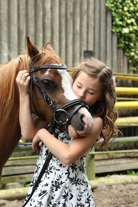 ม้า สัตว์เลี้ยงที่มีมิตรภาพ