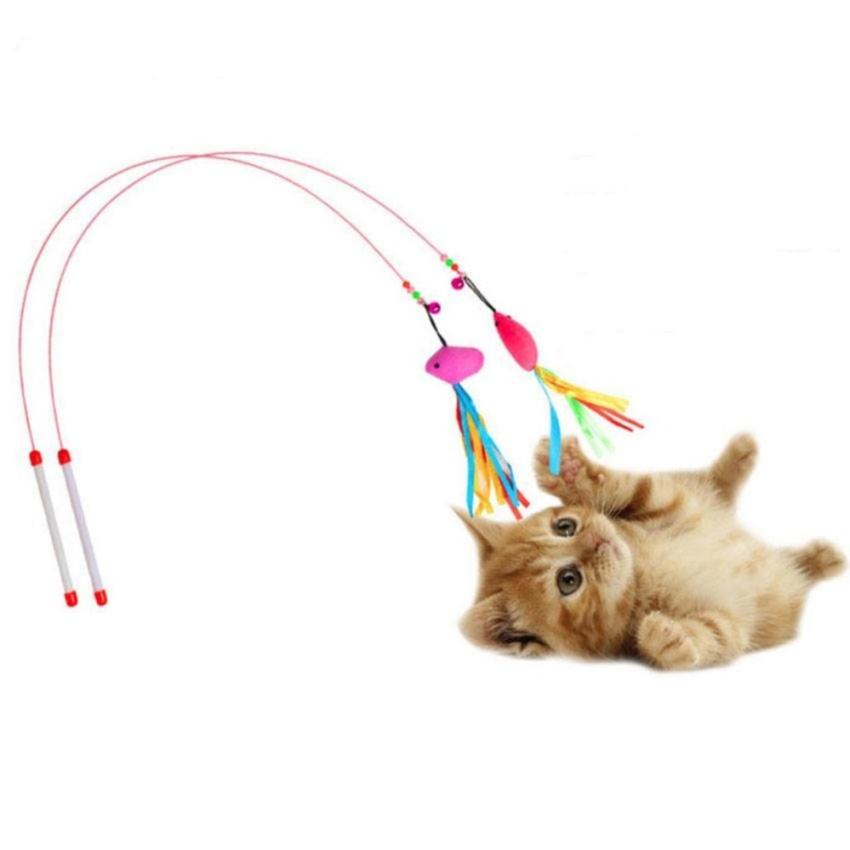 ของเล่นแมว ที่ทาสแมวควรมีให้แมว ไอเทมยอดฮิต ชิ้นแรก ก็คือ ไม้ตกแมว