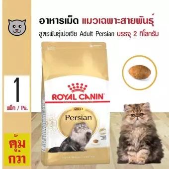 อาหารของแมวเปอร์เซีย