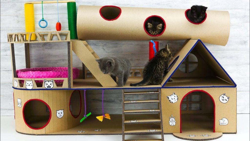 การสร้างบ้านแมว