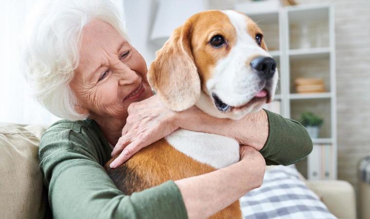ข้อดีของการเลี้ยงสุนัข สัตว์เลี้ยงที่แสดงความรักต่อเจ้าของ