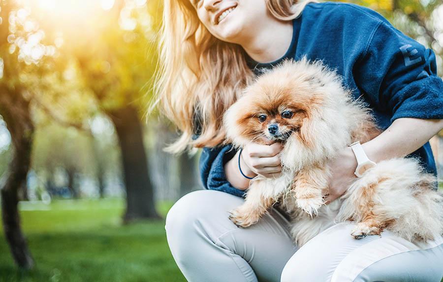 ข้อดีของ การเลี้ยงสุนัข สัตว์เลี้ยงแสนน่ารักที่ใครๆก็หลงใหล