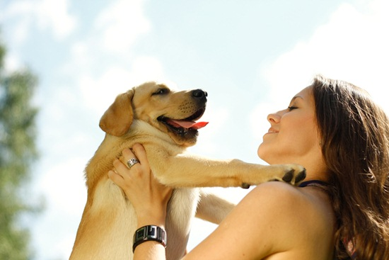 ประโยชน์ของสัตว์เลี้ยง ประโยชน์ข้อแรกที่อยากแนะนำ ก็คือ ลดความตึงเครียด