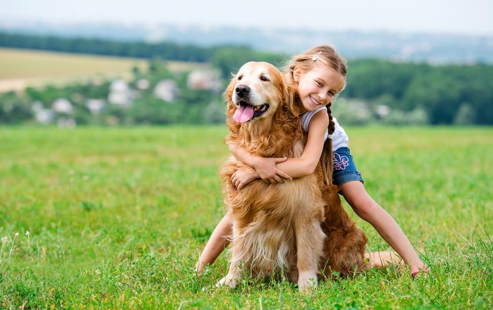 ประโยชน์ของสัตว์เลี้ยง ที่มีความปลอดภัย