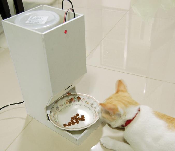 เครื่องให้อาหารแมวอัตโนมัติ