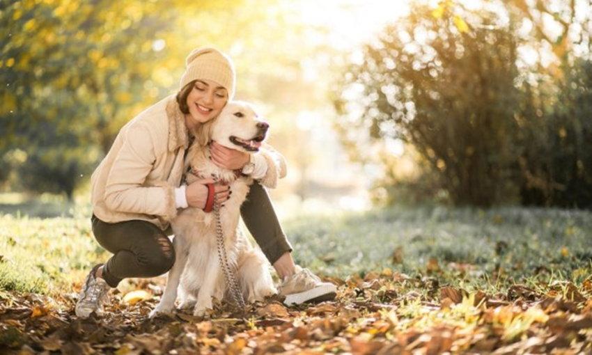 เคล็ดลับการเลี้ยงสัตว์ เพื่อให้สัตว์มีสุขภาพที่ดีและแข็งแรง