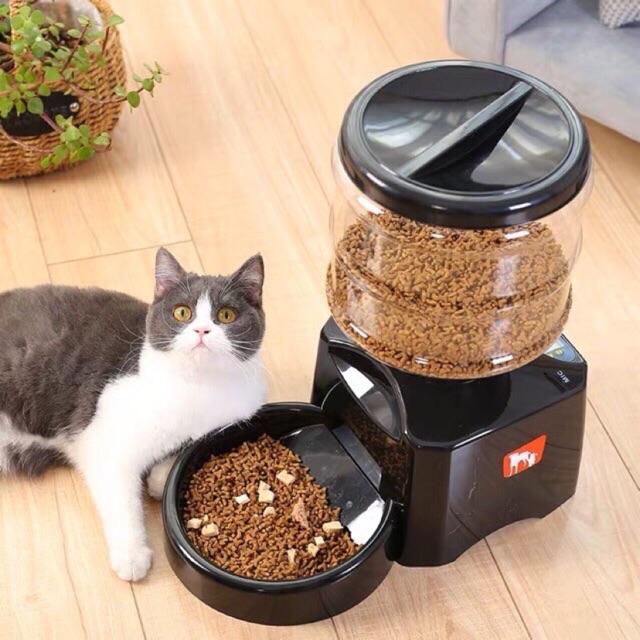 เครื่องให้อาหารอัตโนมัติสำหรับแมว ที่ช่วยให้ทาสแมวสะดวกสบายมากยิ่งขึ้น