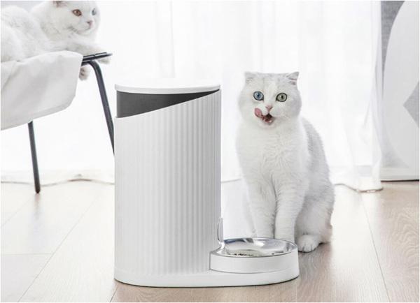 เครื่องให้อาหารอัตโนมัติสำหรับแมว ได้รับความนิยมอย่างมากมีข้อดีจริงหรือไม่